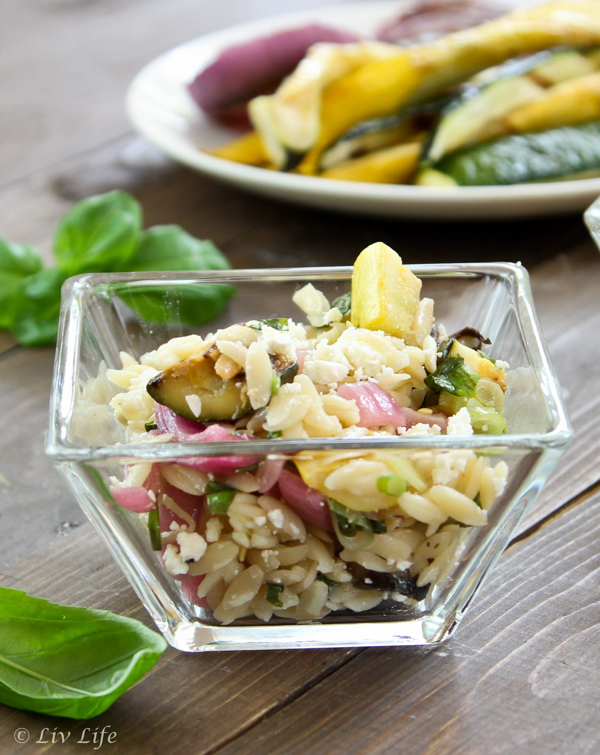 Lemony Orzo Salad with Grilled Zucchii (1 of 2)