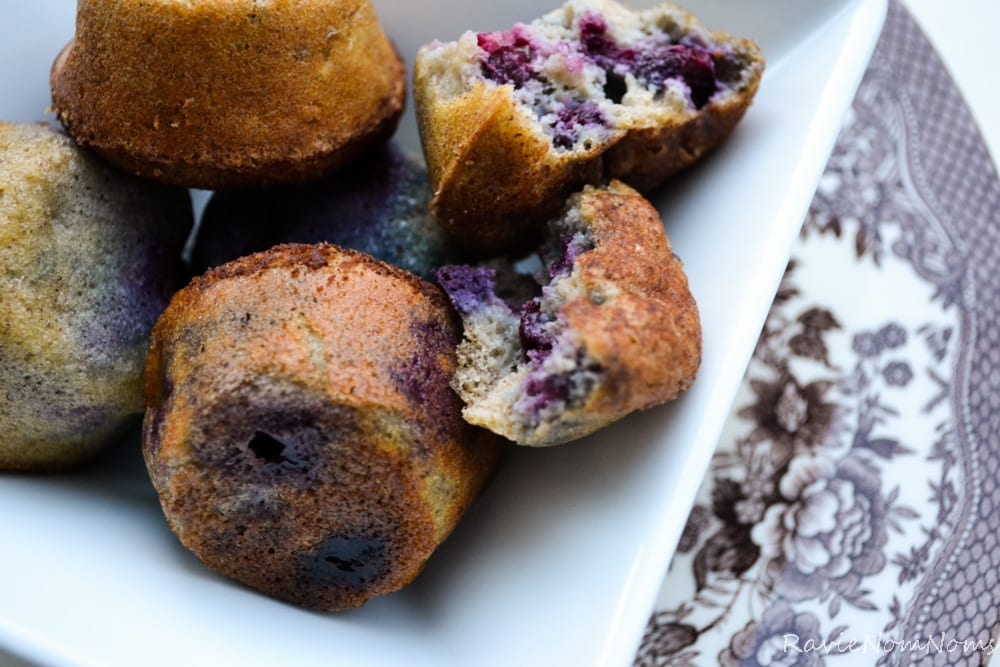 Paleo Blueberry Banana Bites -1-5