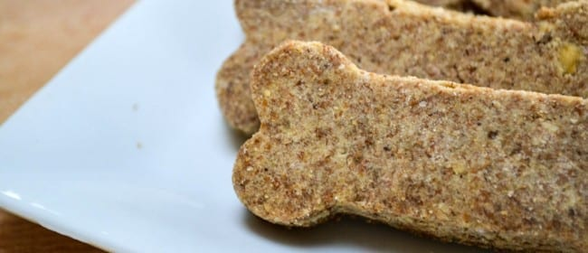 Teddy Treats (Doggie Treats)